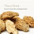 INIKA ORGANIC Phytofuse Renew™ Maca Root Day Cream