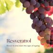 INIKA ORGANIC Phytofuse Renew™ Resveratrol Serum